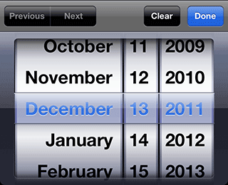 date type input