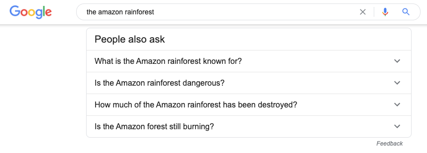 People also ask Google SERPs