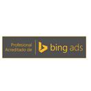 Profesional de Bings Ads